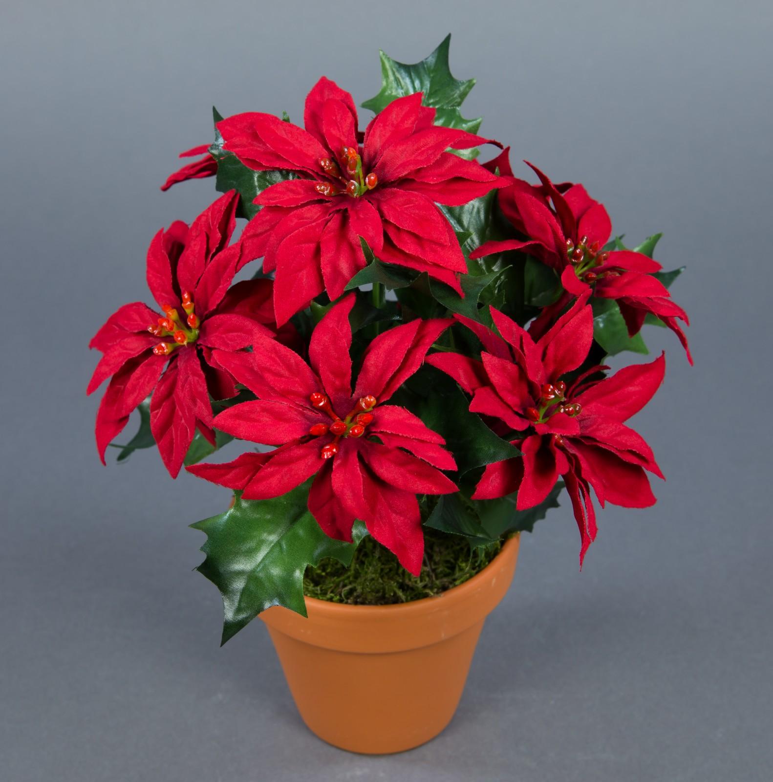 weihnachtsstern 22cm rot im topf ar k nstliche blumen kunstblumen kunstpflanzen ebay. Black Bedroom Furniture Sets. Home Design Ideas