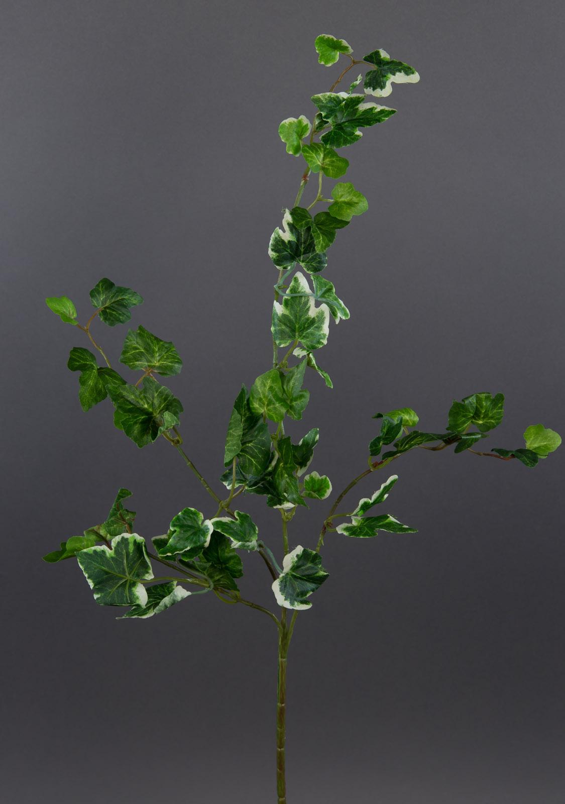 wildefeuzweig 56cm gr n wei ga kunstpflanzen k nstlicher efeuzweig efeu ebay. Black Bedroom Furniture Sets. Home Design Ideas